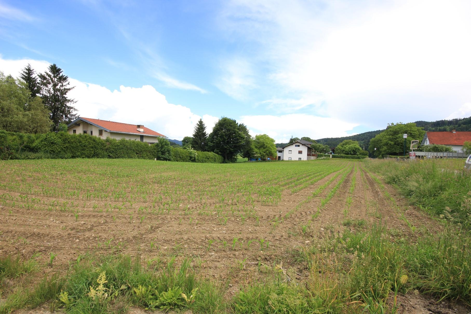 Großzügige Grundstücksfläche in ländlicher Lage